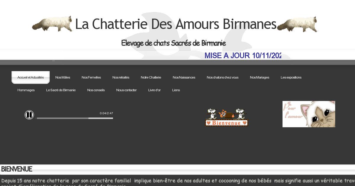 (c) Chats-sacredebirmanie.fr